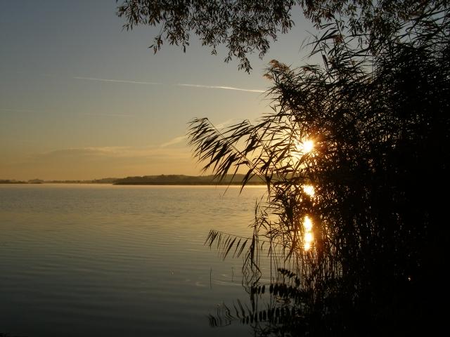 Tisza-tó