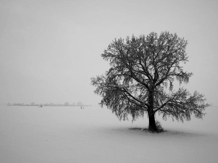 Fergeteg hava